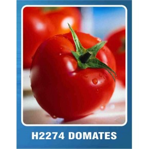 Domates Tohumu H-2274 - 10 gr
