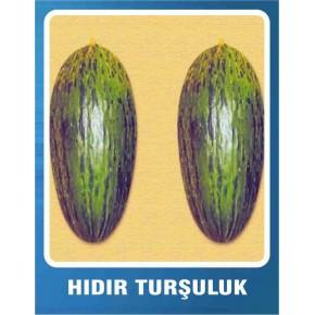 Kavun Tohumu Hıdır (Turşuluk) - 10 gr