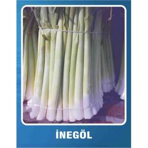 Pırasa Tohumu İnegöl - 10 gr
