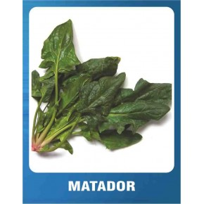 Matador Ispanak Tohumu - 10 gr