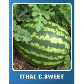 Karpuz Tohumu İthal Crimson Sweet - 10 gr