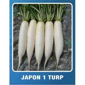Japon Turp Tohumu - 10 gr