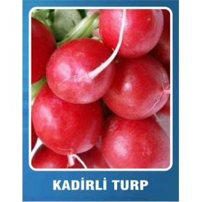 Kadirli Turp Tohumu - 10 gr