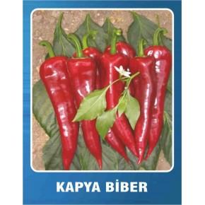 Biber Tohumu Kapya - 10 gr