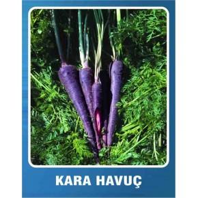Kara Havuç Tohumu - 10 gr