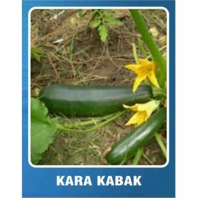 Kara Kabak Tohumu - 10 gr