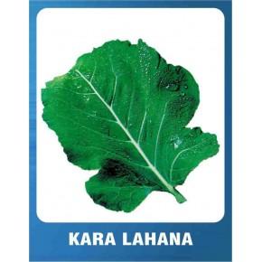 Kara Lahana Tohumu - 10 gr