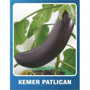 Patlıcan Tohumu Kemer - 10 gr
