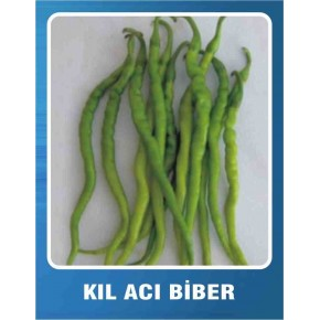 Biber Tohumu Kıl Acı - 10 gr