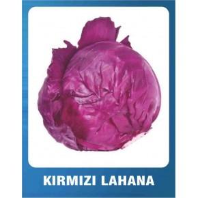 Kırmızı Lahana Tohumu - 10 gr