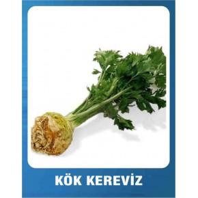 Kök Kereviz Tohumu - 10 gr