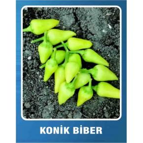 Biber Tohumu Konik - 10 gr