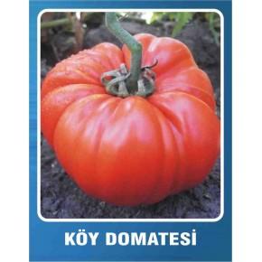 Domates Tohumu Köy - 5 gr