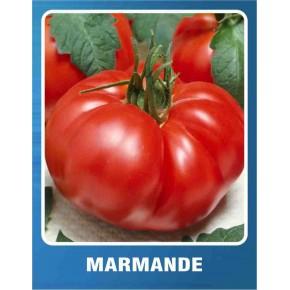 Domates Tohumu Marmande - 5 gr