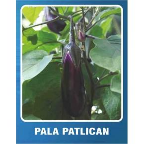 Patlıcan Tohumu Pala - 10 gr