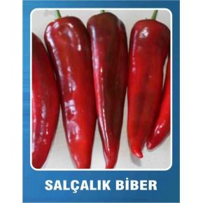 Biber Tohumu Salçalık - 10 gr