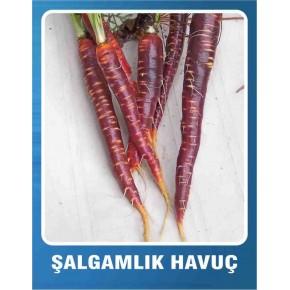 Şalgamlık Havuç Tohumu - 10 gr