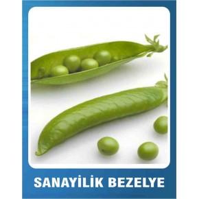 Bezelye Tohumu - Sanayilik 10 gr