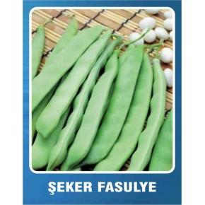 Fasulye Tohumu  Şeker (Sırık) -  10 gr