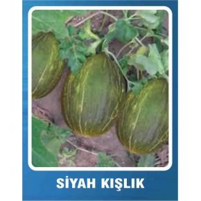Kavun Tohumu Siyah Kışlık - 10 gr