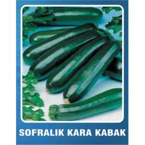 Sofralık Kolsuz Kara Kabak Tohumu - 10 gr