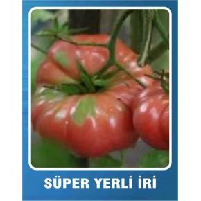 Domates Tohumu Süper Yerli İri - 5 gr