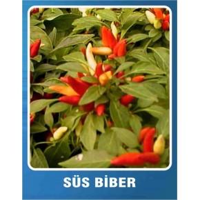Süs Biberi Tohumu - 10 gr