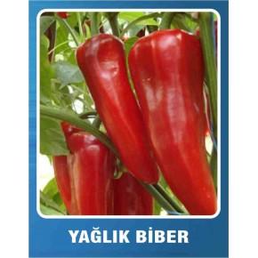 Biber Tohumu Yağlık - 10 gr