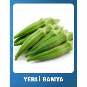 Yerli Bamya Tohumu - 10 gr