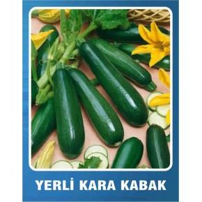 Yerli Kara Kabak Tohumu - 10 gr