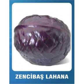 Lahana Tohumu Zencibaş - 10 gr