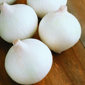 Beyaz Soğan Tohumu Beyazay - 1 Kg