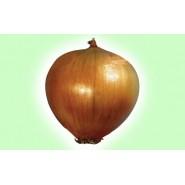 Hasat Soğan Tohumu - 1 kg