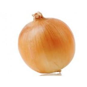 Keş Soğan Tohumu - 1 kg