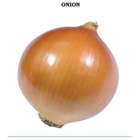 Valanciana Soğan Tohumu - 1 kg