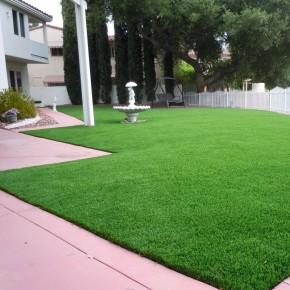 Çim Tohumu 6 Mix Grass Karışımı - 10 kg