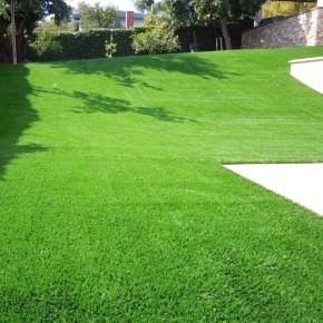 Çim Tohumu 7 Mix Grass Karışımı - 10 kg