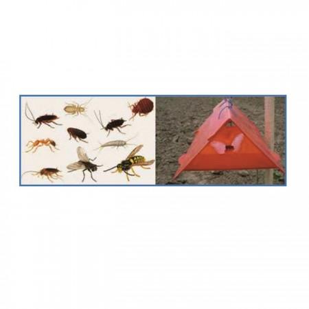 Doğal Böcek Yakalama Tuzağı