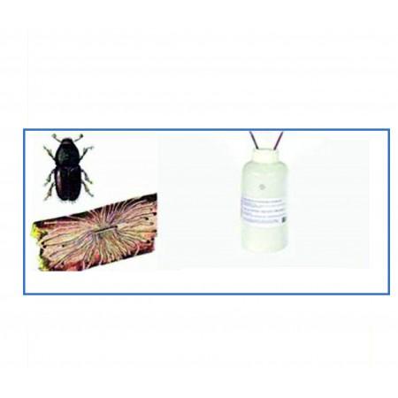 Elma Yazıcı Böceği Feromonu